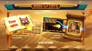 Book of cat スピン